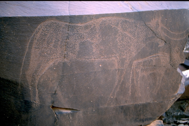 gravures rupetres maroc